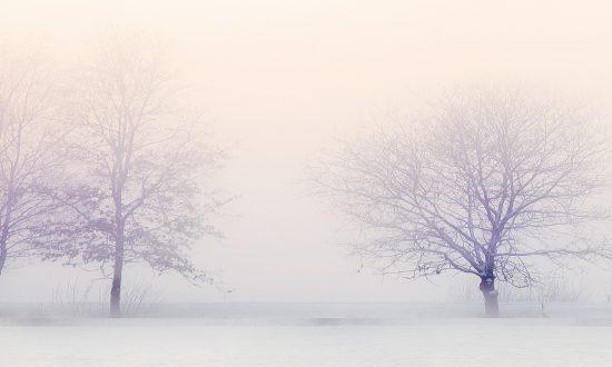 201711-winter-landscape-2571788