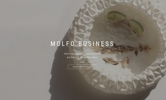 MOLFOBUSINESS-EN